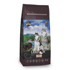 LANDOR, ADULT DOG FISH